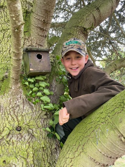 Arlo Bird Box